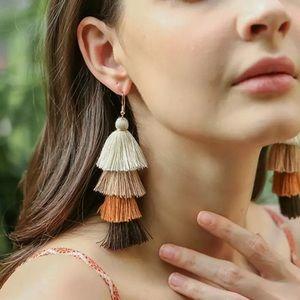 Ombre Fringe Statement Earrings